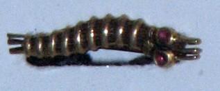 caterpillar club 1